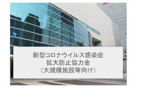 新型コロナウイルス感染症拡大防止協力金(大規模施設等向け)【第2期:8月20日~9月12日の時短要請分】